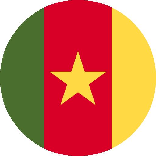 Q2 Cameroon